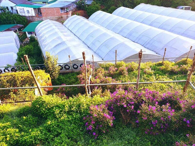 homestay-da-lat-co-vuon-farm-26